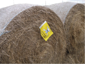 Properly labelled bale stacks.